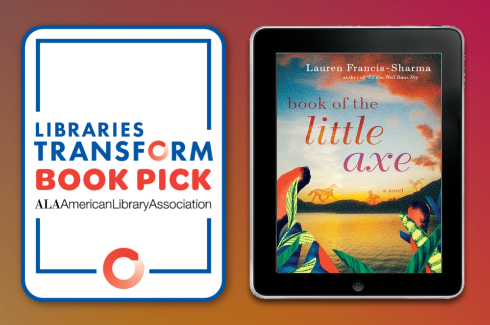 Virtual - Libraries Transform Book Discussion